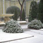 neve a Roma fev.3.2012 149 - Copia